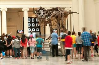 Enjoy the Field Museum for free throughout February
