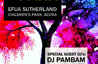 Party in the Park,Osu,Accra