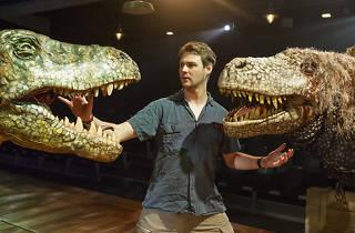 Dinosaur Zoo
