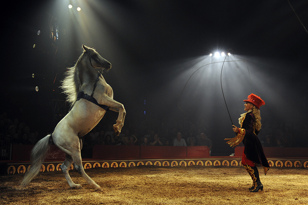 Big Apple Circus: The Grand Tour