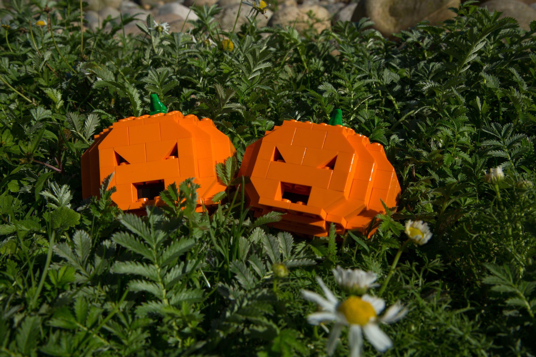 Lego pumpkin workshop at London Wetland Centre