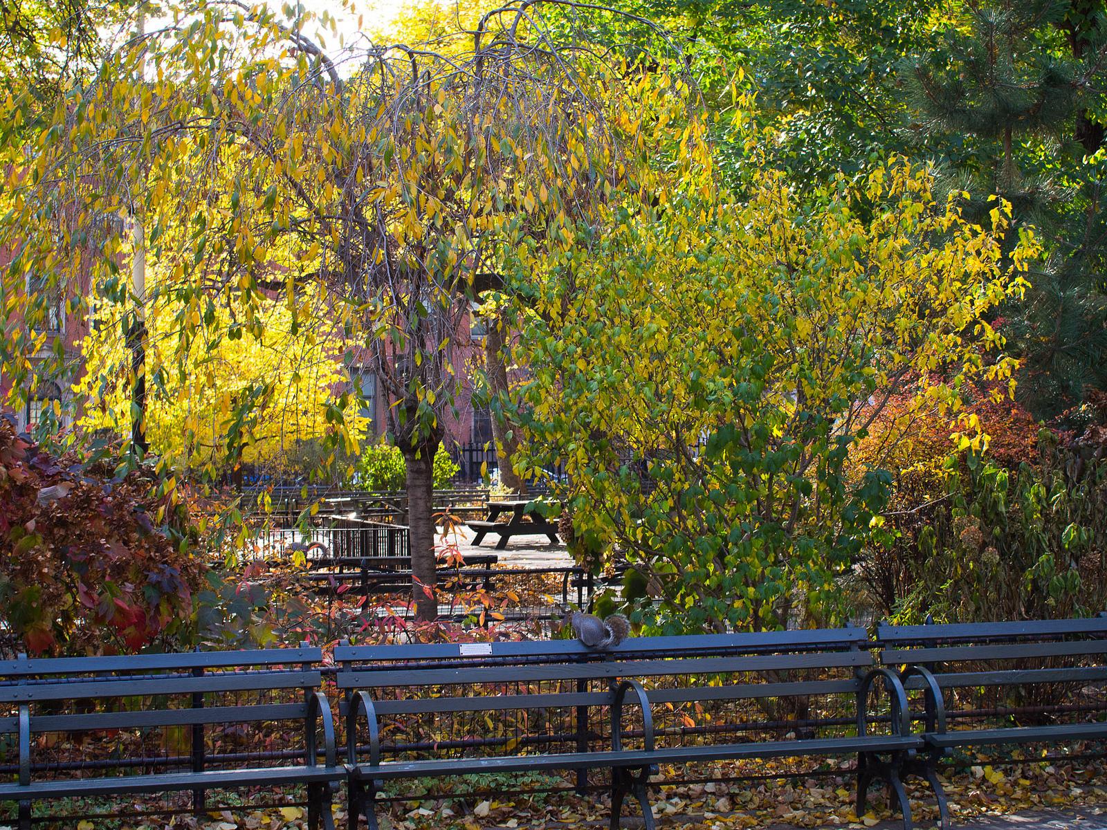 Stuyvesant Square Park