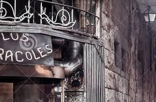 Ruta del 'Boom' Llatinoamericà a Barcelona: Ciutat Vella
