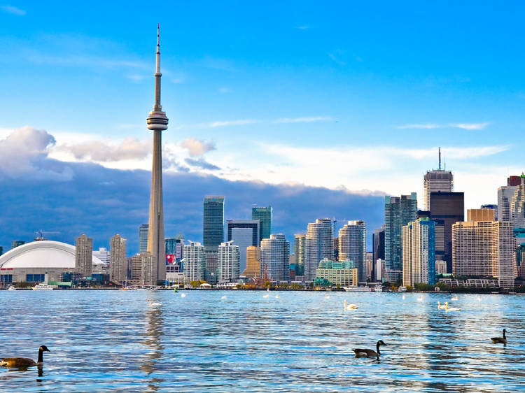 The 12 best attractions in Toronto