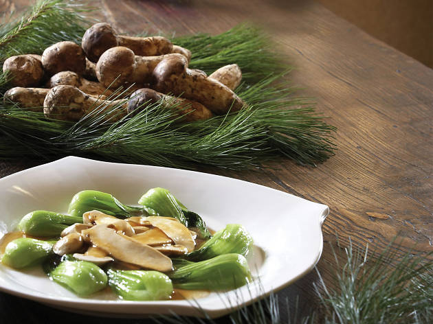 Autumn Dishes with Wild Pine  mushrooms at the JW marriott  Hotel seoul