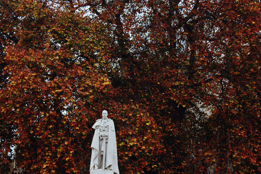 A statue of George V in London, in front of an autumn-coloured tree