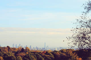 The view over London from Hampstead Heath in autumn.