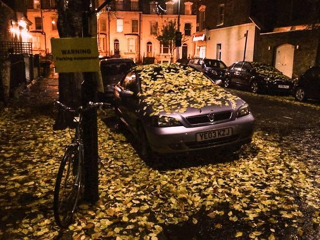 Autumn leaves cover a car on a London street.