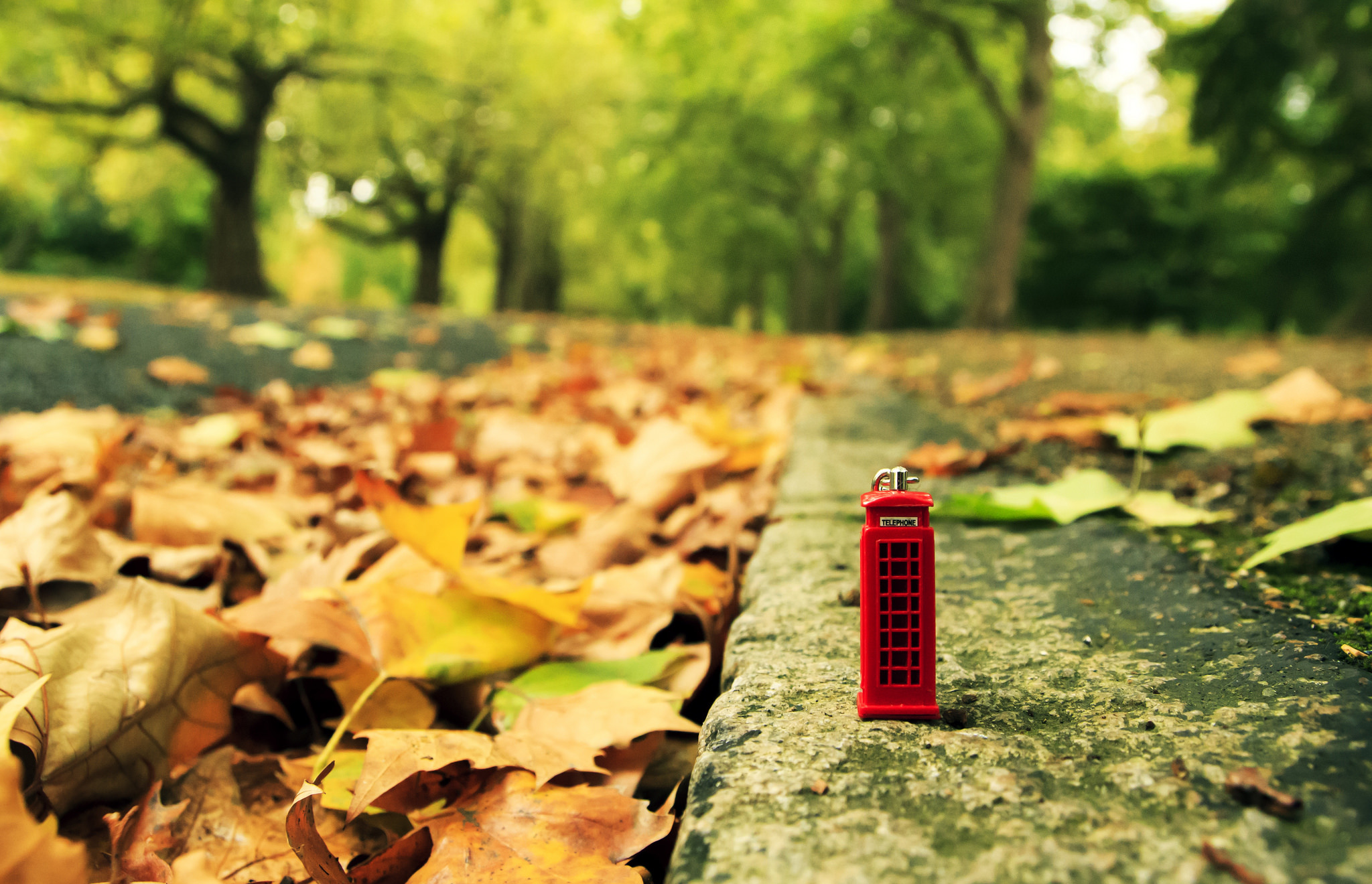 A miniature telephone box surrounded by giant autumn leaves.