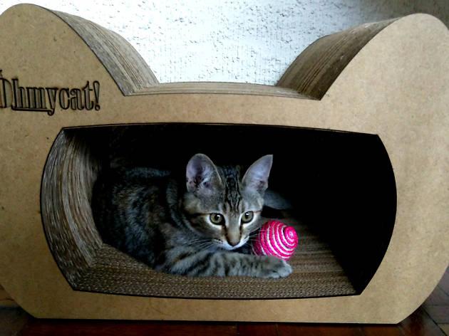 Rascadores para gato hecos con materiales reciclados