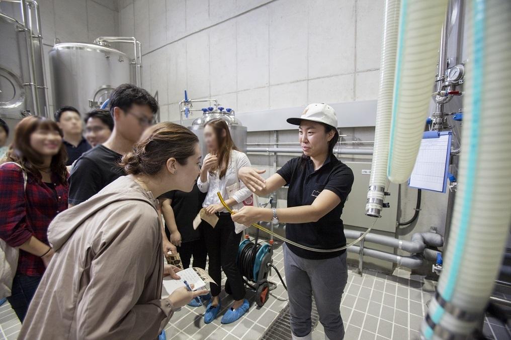 The Korea Craft Brewery