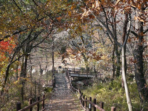 Great to go in the fall, the walking trail on Bukhansan mountain