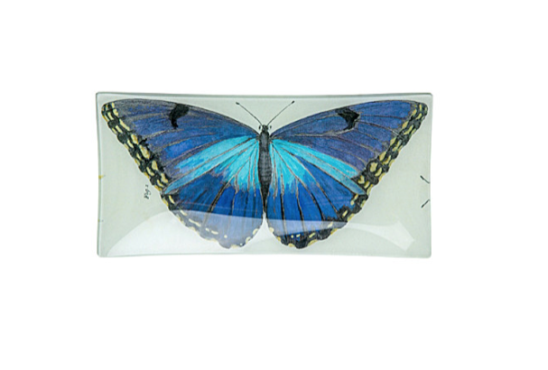 Butterfly pencil tray, £85