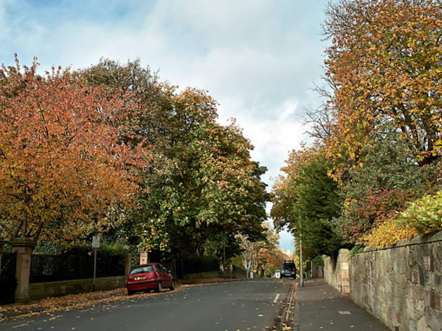 merchiston autumn