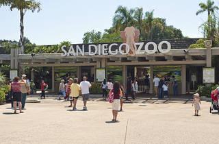(Photograph: Courtesy San Diego Zoo)