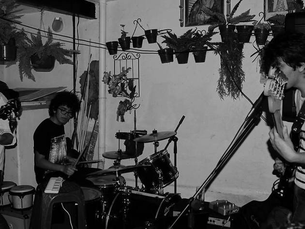 Instinto de Ave banda de dark