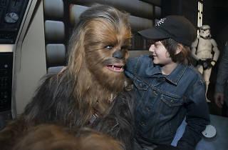 Star wars, madame tussauds, chewbacca