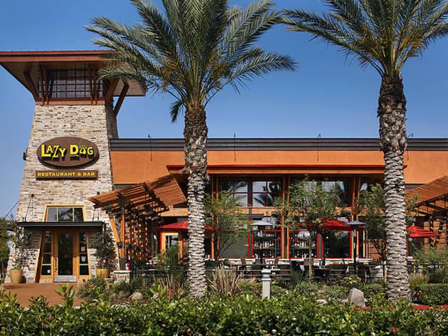 Lazy Dog Café | Restaurants in Thousand Oaks, Los Angeles