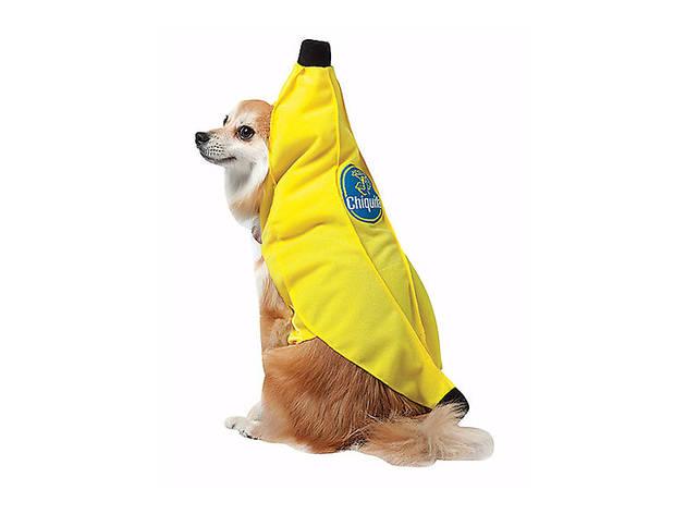 Chiquita Banana dog costume, $25, at spirithalloween.com