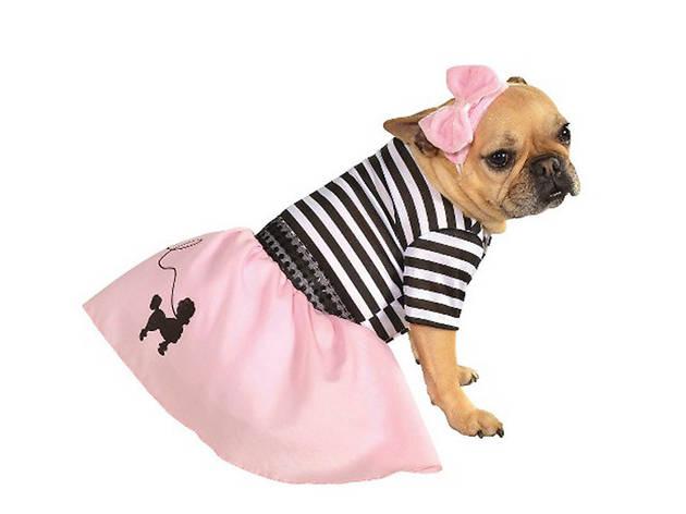 Fifties Girl pet costume, $13, a target.com