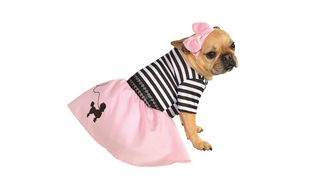 Fifties Girl pet costume $13 a target.com  sc 1 st  Time Out & Best pet Halloween costumes and ideas for dogs and cats