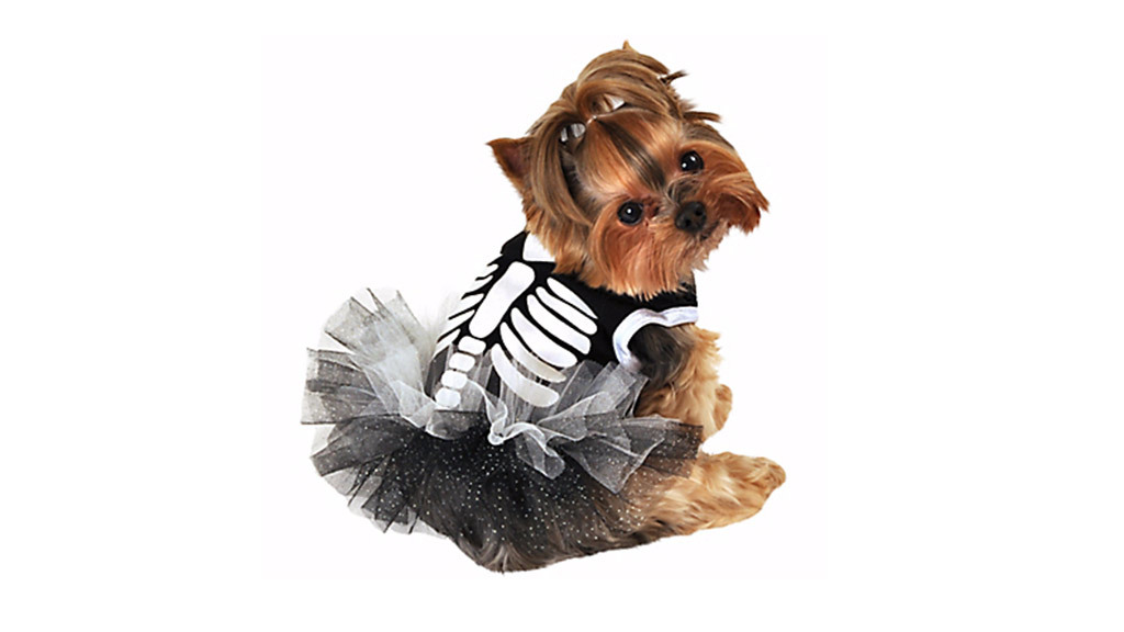 Heart Skeleton dog tutu dress, $9, at partycity.com