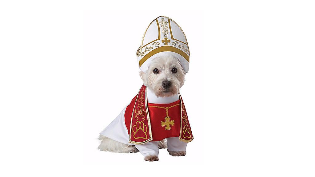 Holy Hound pet costume, $25, at spirithalloween.com