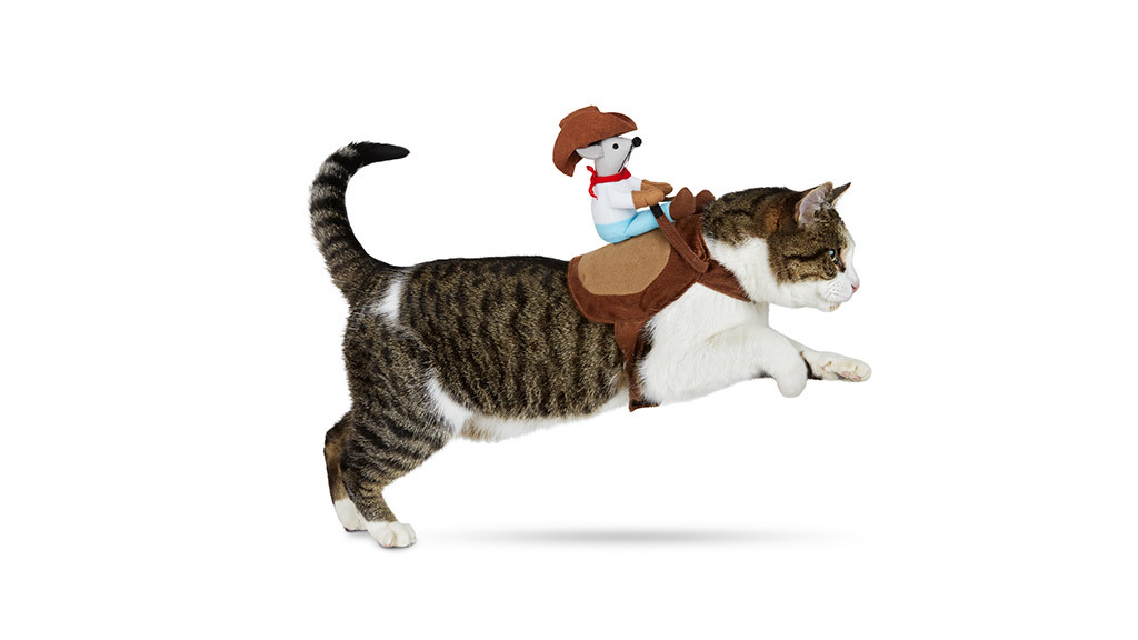Petco Halloween Kitty Up Cowboy cat costume, $10, at petco.com