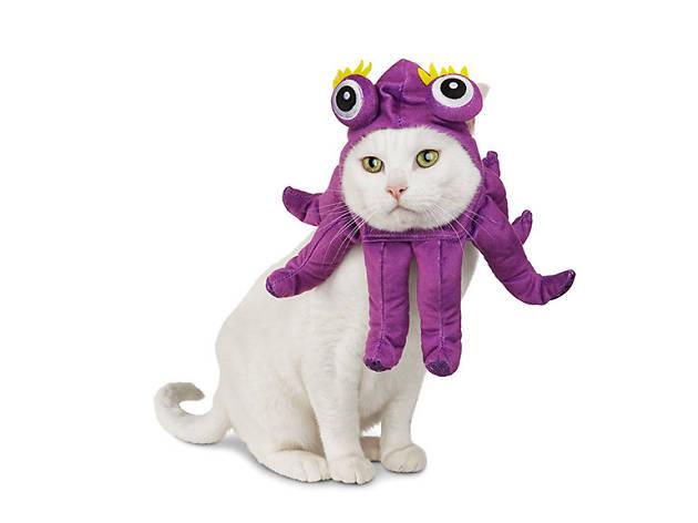 Petco Halloween Octopus cat costume, $10, at petco.com