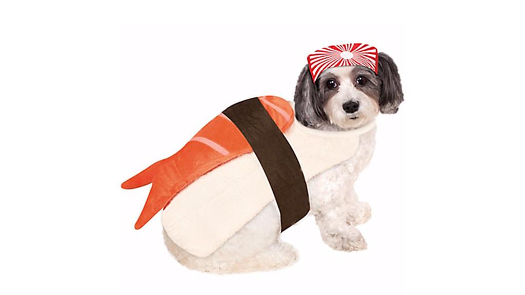 Sushi dog costume, $15, at partycity.com