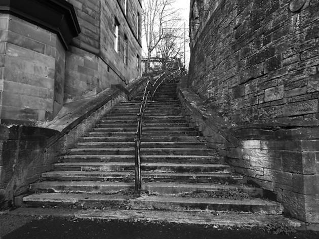 steps, stairs, staircase