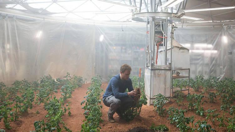 Matt Damon is the Bernard Matthews of potato farming in your own shit