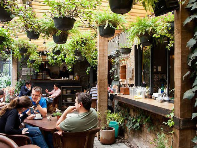 Cafés en la San Miguel Chapultepec