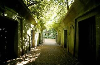 101 Things To Do in London: Highgate Cemetery