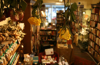 Treadwell's Bookshop flowers, Bloomsbury