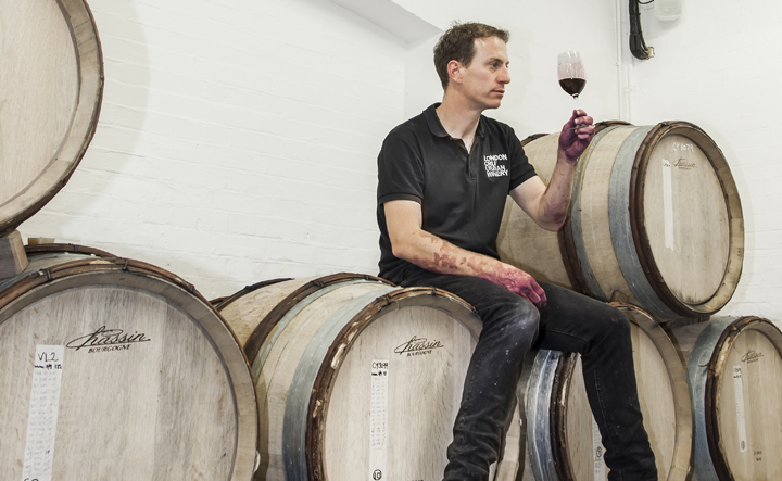 how to become a winemaker