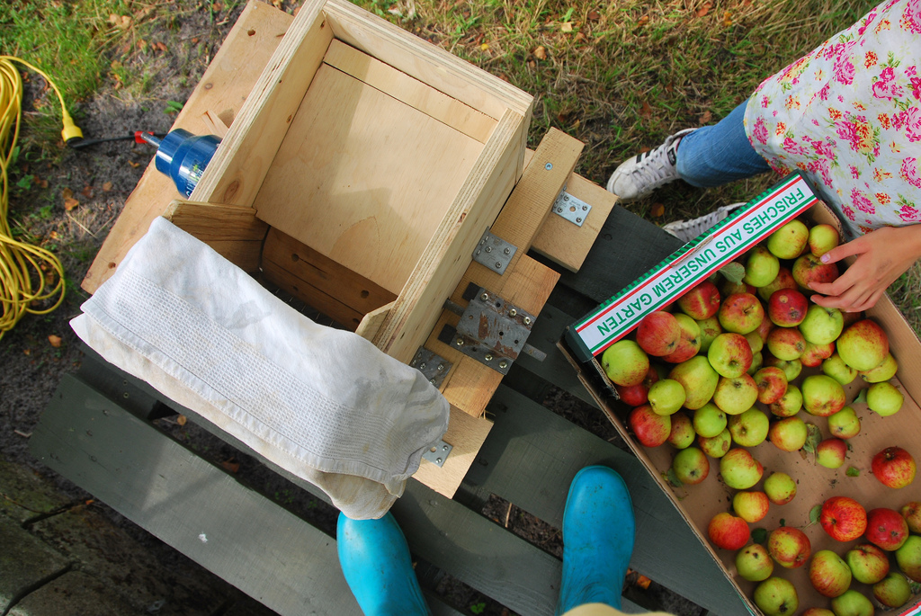 Five cider mills near New York City to visit with the kids