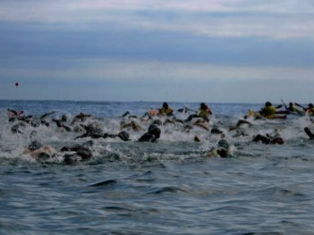 Sea Swimming in Barcelona