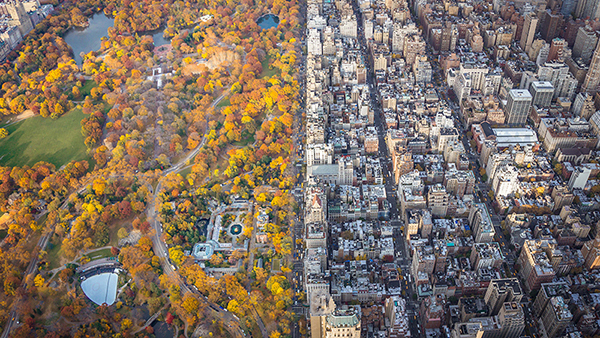 See these stunning aerial shots of NYC in the fall