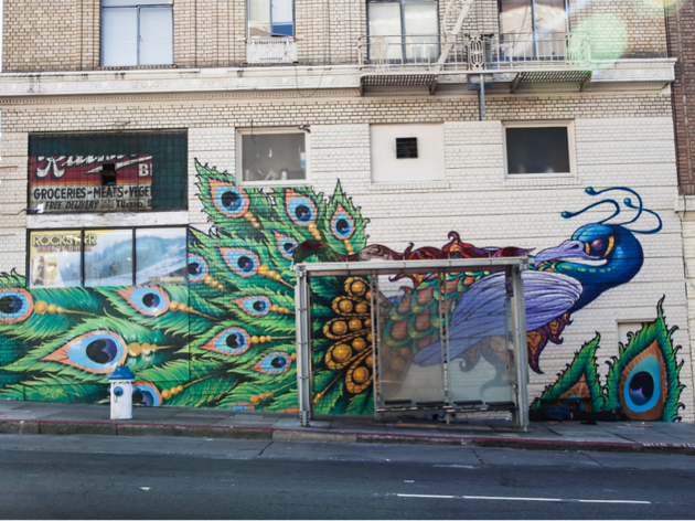 Pretty feathers on Leavenworth, graffiti in San Francisco