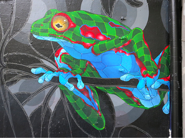 Geometric frogs in Upper Haight, graffiti in San Francisco