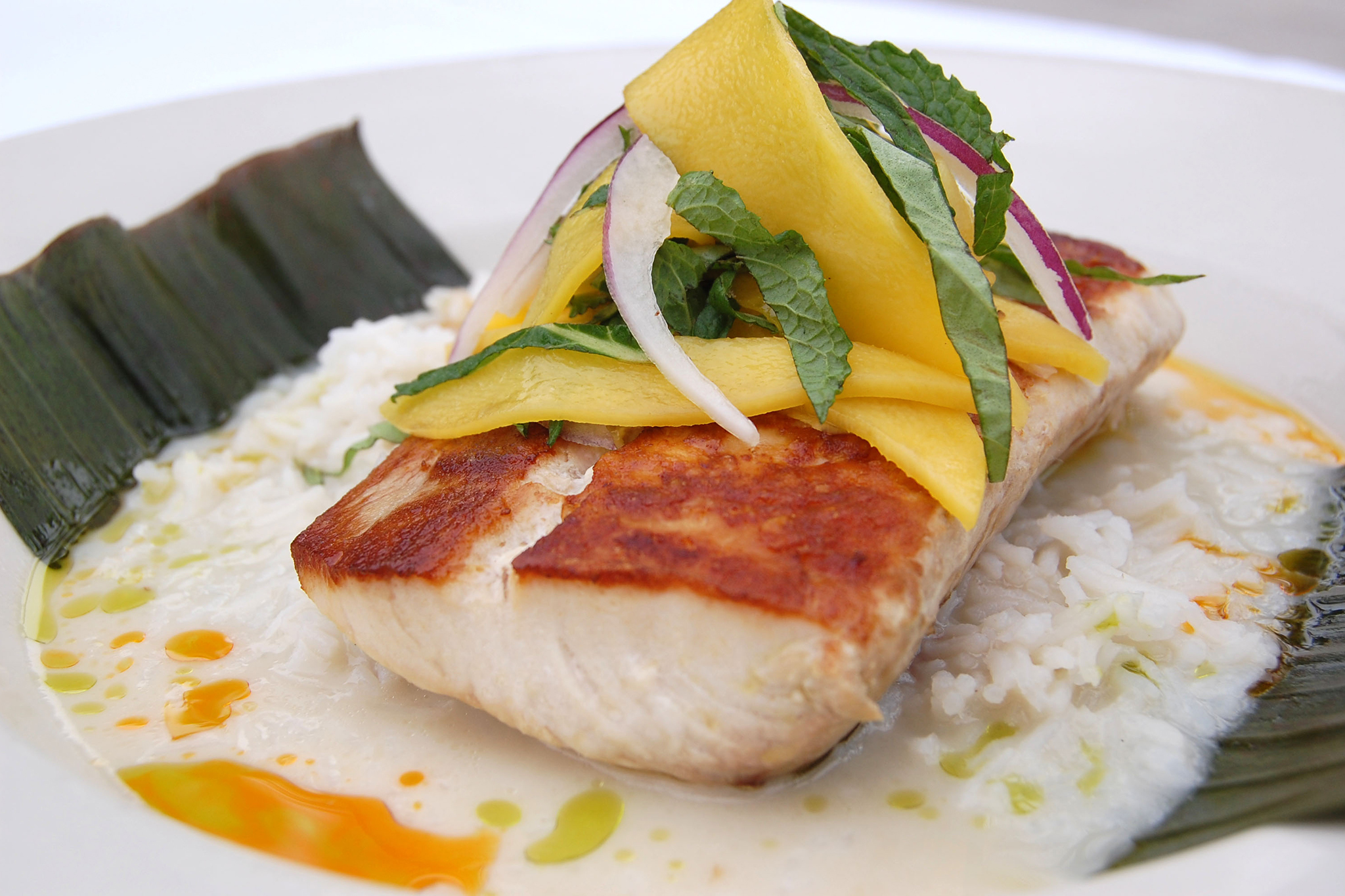 Red Fish Grill Restaurants In Coral Gables Miami
