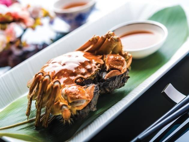 Hairy Crabs - Summer Palace