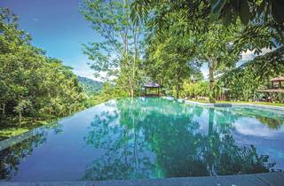 Templer Park Rainforest Retreat