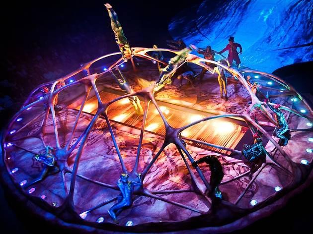 Cirque du Soleil Totem 3