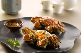 Yan Ting - Steamed hairy crab