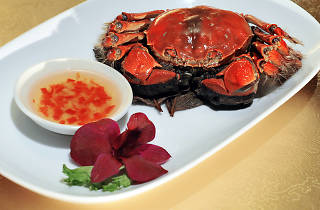 Season of Hairy Crabs at Wan Hao Chinese Restaurant