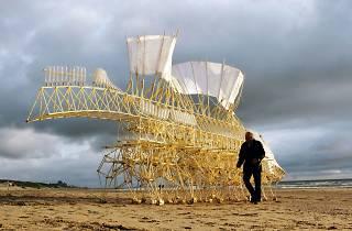 Theo Jansen. Fascinating creatures