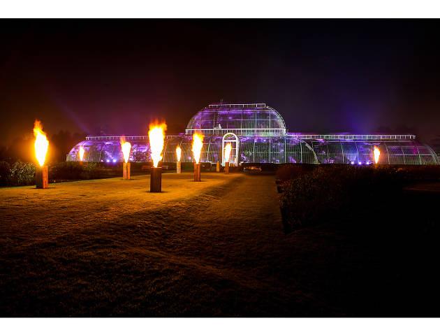 Visit star-spangled gardens at Kew Gardens
