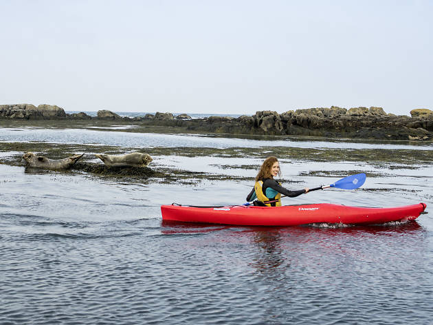 Kayaking in Dalkey